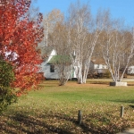 Fall Coutyard at Big Whiteshell Lodge